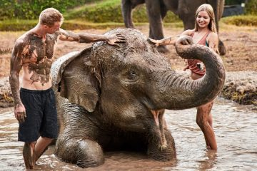 Bali Zoo Elephant Mud Fun | Bali Made Tour